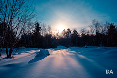 Deep Blue Shadows (Thousand Word Images by Dustin Abbott) Tags: sonya7riii manualfocus ilce7rm3 sony thousandwordimages mirrorless dustinabbottnet cold blue shadows dustinabbott winter viltroxpfurbmh20mmf18aspherical petawawa sonya7r3 pembroke snow ontario canada fullframe 2019 photography photodujour ca