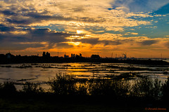 Sunrise at low tide (cstevens2) Tags: antwerp antwerpen antwerpenprov anvers belgique belgium belgië europe flanders flandre goldenhour goudenuurtje havenvanantwerpen lillo morning ochtend portofantwerp vlaanderen sunrise zonsopgang zonsopkomst
