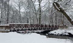 2019 Bike 180: Day 9 - First Snow! (mcfeelion) Tags: cycling bike bicycle snow fallschurchva luriapark holmesrun bike180 2019bike180