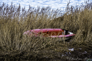Washed up icy boat. (Lek river)