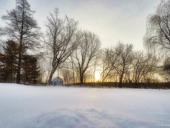 A very cold and sunny morning. (Lise1011) Tags: sun barn fence landscape sunset sunrise nature white beautiful day outdoor rural trees winter snow