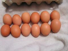 Supervalue 12 Medium Fresh Eggs - Eggs - €2 29012019 her 22-01-2019 (Lord Inquisitor) Tags: supervalu supervalueggs heneggs heneggs2019 hen eggs eggbox browneggs crackedegg cracked