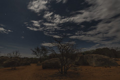 _RJS3566 (rjsnyc2) Tags: 2019 africa d850 himba landscape namibia night nikon outdoors photography remoteyear richardsilver richardsilverphoto safari sunset travel travelphotographer animal camping nature sky stars tent wildlife