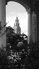 Rivendell (Rand Luv'n Life) Tags: odc our daily challenge hometown san diego california tower balboa park architecture columns foliage arch outdoor pov monochrome blackandwhite rivendell fantasy elves hobbit