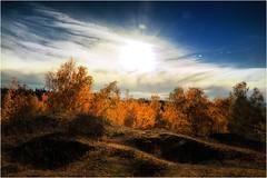 Blätterleuchten (linke64) Tags: thüringen deutschland germany gegenlicht natur landschaft laub bäume himmel herbst sonne schatten wolken wald rahmen jahreszeiten