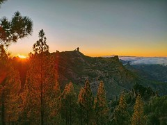 If you haven't done it yet, have a trip to the wild area of Las Cumbres and stay to watch the sunset 🌄 Gran Canaria has such a wide variety of landscapes that we call it our own little continent ️ - Join the family and book at www.h (hitidehostel) Tags: ifttt instagram surf laspalmas grancanaria accommodation trip voyage travel sport action beach sun surfwyjazdy hitide discovery hostel 5starhostel
