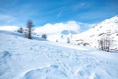 Simplonpass_26. Januar 2018-4 (silvio.burgener) Tags: simplonpass simplon switzerland adler schweiz swiss svizzera suisse hospiz sempione steinadler