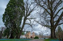 Botanischer Garten Karlsruhe (KaAuenwasser) Tags: botanischergartenkarlsruhe botanischergarten garten park anlage weg wege baum bäume pflanzen gebäude historisch wetter himmel wolken