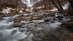Flüelapass (andgot1) Tags: river rio riacho rochas rocks rock water wasser winter wild white wald água árvores autumn alpes mountain montanhas montanha