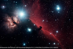 IC 434 Horsehead Nebula (achrntatrps) Tags: constellationdorion orion nightshot d5300 nikon photographe photographer alexandredellolivo dellolivo lachauxdefonds suisse nuit night nacht galaxie galaxy achrntatrps achrnt atrps radon200226 radon etoiles stars sterne estrellas stelle astronomie astronomy nicht noche notte suivi astrophotographie ic434 nébuleusedelatêtedecheval horseheadnebula flamenebula ngc2024 sh2277 lbn953 ced55p ced55n nébuleusedelaflamme twin1 isr2 eosforastro skywatcher skywatcherquattro200 eq6rpro flammennebel barnard33 pferdekopfnebel nebulosacabezadecaballo nebulosadelaflama horse nebula cheval caballo pferd flamme flame nébuleuse