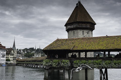 Beautiful Bridge Walk (Norse_Ninja) Tags: seagull bird bridge kapellbrücke wooden lucerne switzerland town panasonic gh5 journeyjd17
