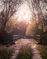 Bridge to Nowhere..... (Johnners61) Tags: rawtenstall lancashire uk england britain newhallhey bridge autumn autumnal fall mood moody microfourthirds micro four thirds m43 mft olympuspen pen olympus mist smoke steam explore inexplore explored river irwell dreamy