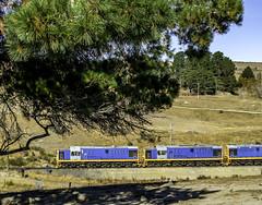 Pukerangi, New Zealand (Tony Tomlin) Tags: taierigorgerailway pukerangi newzealand dunedinrailways locomotives passengertrain mitsubishi dj locomotive