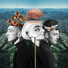 WHAT IS LOVE ? (Divinidoles) Tags: cantwait whatislove cleanbandit marinaandthediamonds luisfonsi np nowplaying clubbanger songofthemoment newsong newsound bestsong new club dance lovesong cleanbanditbaby marinadiamandis remix edit 1 dancemusic pop popmusic mix