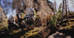 Scouting (Kyle Hardisty) Tags: kyle hardisty lego photography macro custom lighting depth field canon rebel sl1 minifigure minifig brickarms california star wars stormtrooper outdoor airborne 501st trooper clone arc commander flickr photos photoshop toyphotography fireworks minifigures scout 2018