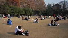 Grace Period (Wolfgang Bazer) Tags: xiao yao park hefei anhui dezember december autumn fall winter china