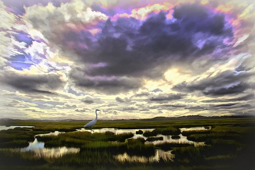 Clouds and Salt Marsh