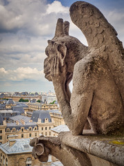 Paris (Richard Pilon) Tags: france paris notredamedeparis cathedral lestryge olympus chimera
