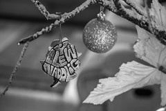 Nadolig Llawen, Merry Christmas Flickr 😊 (diannerobbins1) Tags: christmastree 7200 merrychristmas welsh nikon 40mm macrolens 40mm28 festive blackandwhitephotography