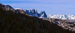 Dolomiti (giorgiorodano46) Tags: gennaio2014 january 2014 giorgiorodano sciliar dolomiti dolomites alpiaurine zillertaleralpen sudtirolo altoadige groden valgardena italy inverno winter hiver neve neige snow