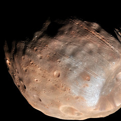 Phobos from 5,800 Kilometers. Original from NASA. Digitally enhanced by rawpixel. (Free Public Domain Illustrations by rawpixel) Tags: otherkeywords tags tagcc0 astrology astronomical astronomy astrophotography cc0 celestial cosmology cosmos galaxy marsreconnaissanceorbitermro moon name nasa outerspace pdnasa phobos publicdomain satellite solarsystem space surface themilkyway universe