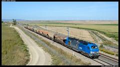 Cerealero en Almudévar (javier-lopez) Tags: ffcc railway train tren trenes adif comsa crt mercancías cerealero cereal 335 euro4000 euro 4000 uagpps ptt vtg martorell barcelonacantunis canfranc almudévar campo campos maíz 14092018