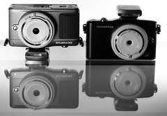 The Olympus E-PM1 and E-PM2. (CWhatPhotos) Tags: cwhatphotos esystem camera lens olympus light photographs photograph pics pictures pic picture image images foto fotos photography that have which with contain mk digital product micro four thirds 43rds 43 mirrorless artistic view shadows shadow body cap bodycap white 15mm 9mm fisheye epm1 epm2 cameras compare comparison flickr