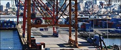 Red Hook, Brooklyn (Paul Anthony Moore) Tags: queenmary2411november2018 redhook brooklyn newyork containers