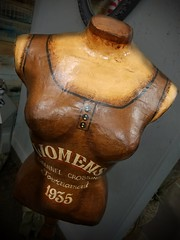 Busting out (MoparMadman63) Tags: bust fashion sewing fitting antique old brown unique viewpoint indoors