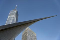 NYC (marco rubini) Tags: nyc newyorkcity metropolitana grattacielo liberty oculus calatrava colore cielo