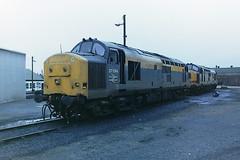 BRITISH RAIL 37294 (bobbyblack51) Tags: british railways class 370 english electric type 3 coco diesel locomotive 37294 ayr depot 1993
