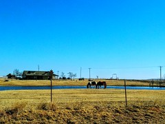 No Need To Dream.. (lillypotpie) Tags: homestead horses landscape pond prairie oklahoma water prairiegrasses blueskies