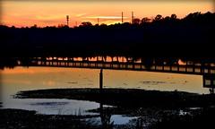 Fluid Sunset (gatorgalpics) Tags: