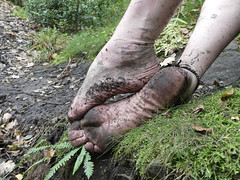 Autumn hike (Barefoot Adventurer) Tags: barefoot barefooting barefooter barefoothiking barefeet barefooted baresoles barfuss barefootwalking blacksoles earthsoles earthing earthstainedsoles earth connected callousedsoles soles strongfeet stainedsoles energy naturallytough naturalsoles natural anklet arches autumnbarefooting autumnsoles ankles toes toughsoles healthyfeet happyfeet hardsoles flexiblefeet freedom ruggedsoles
