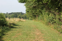 The Farm Trail