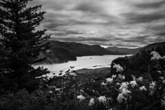 Columbia River (fcabral.cabral) Tags: monochrome columbia river clouds flowers trees oregon portland gorge