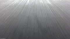 Raindrops (Jenke-PhotozZ) Tags: regentropfen regen rain raindrops berlin beton mahnmal memorial minimalism memory motive symmetrical symmetrie symmetric perspective photo photography architecture architektur abstrakt abstract holocaust holocaustmahnmal view sun reflection near wall stones labyrinth