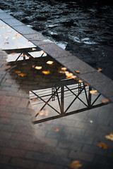 Bridge Reflection (Sean Anderson Media) Tags: reflection puddle bridge architecture sonya7sii autumnleaves fotodiox canontosonyfusion canonef50mmf18stm shallowdof water muddy canal winter
