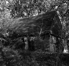 The shed (Rosenthal Photography) Tags: ff120 epsonv800 20181202 6x6 asa400 schwarzweiss ilfordhp5 weltaweltax mittelformat analog ilfordrapidfixer shed barn landscape mood autumn winter november welta weltax zeiss tessar czj 75mm f35 ilford hp5 hp5plus lc29 129 epson v800