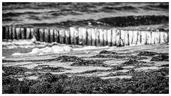 Hiddensee Island . (:: Blende 22 ::) Tags: blackwhite black white blackandwhite wood buhne wasser water beach bw monochrome einfarbig weis schwarz schwarzweis strasenszene strand hiddensee deutschland germany mecklenburgvorpommern insel island canoneos5dmarkiv ef70200mmf4lisusm