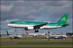 EI-DEL Airbus A320-214 Aer Lingus (elevationair ✈) Tags: dublin airport dublinairport dub eidw airliners airlines avgeek aviation arrival landing sun sunshine runway shamrock aerlingus airbus a320 airbusa320214 eidel