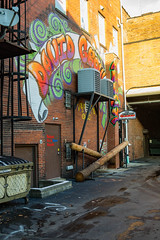 trumbell-6971 (FarFlungTravels) Tags: county northeast alley alleyway davegrohl ohio travel trumbell warren