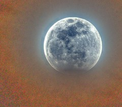 Blood Wolf Moon January 2019 (JoelDeluxe) Tags: january 2019 blood wolf moon eclipse newmexico nm joeldeluxe