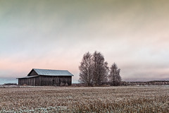 Old Barn House And Bare Trees (k009034) Tags: 500px wooden copy space finland scandinavia tranquil scene architecture bare tree barn house building clouds cold fields frost landscape nature no people old scenic sky trees winter teamcanon copyspace tranquilscene baretree barnhouse nopeople