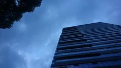 Shanghai, China - Tuesday, November 20, 4:19 PM. #Shanghai #China #JingAn #Sidewalk #CloudyDay #LateAfternoon #Autumn #上海 #中国 #秋 (kyonoshashin) Tags: 中国 china autumn 秋 sidewalk cloudyday lateafternoon jingan shanghai 上海