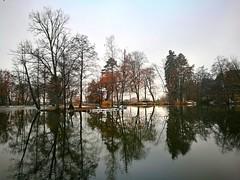 Reflections and reflections (Baubec Izzet) Tags: baubecizzet nature lake trees autumn