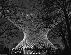 Nest (peterphotographic) Tags: photo11012019184200sefexedwm apple appleiphone iphone iphonex x ©peterhall nik silverefexpro2 blackandwhite blackwhitephotos monochrome bw walthamstow e17 eastlondon london england uk britain lloydpark nest marshmallowlaserfeast erlandcooper londonboroughofculture culture walthamforest lbwf soundscape audiovisual light lighting lightshow tree silhouette park dark night nightlife epic