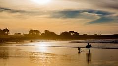 A5D_6672 Silhouettes before Sunset (foxxyg2) Tags: sun sunsets beach asilomar monterey montereypeninsula california coast coastal ocean pacific