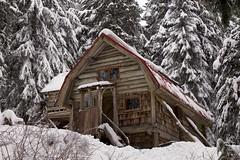 Little Cabin in the Big Woods (chris.ph) Tags: cabin cypress britishcolumbia snow forest winter cozy offthegrid canon6d ef24105mmf4lisusm trees winterwonderland