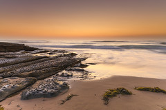 Beach Seascape and Rock Ledge in Soft Shades of Brown (Merrillie) Tags: daybreak clearskies nature australia sky sunrise brown centralcoast newsouthwales rocks toowoonbay nsw morning beach ocean sea earlymorning waterscape coastal landscape outdoors seascape rockledge coast water dawn